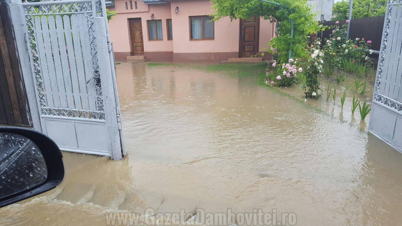 inundatii aninoasa 3