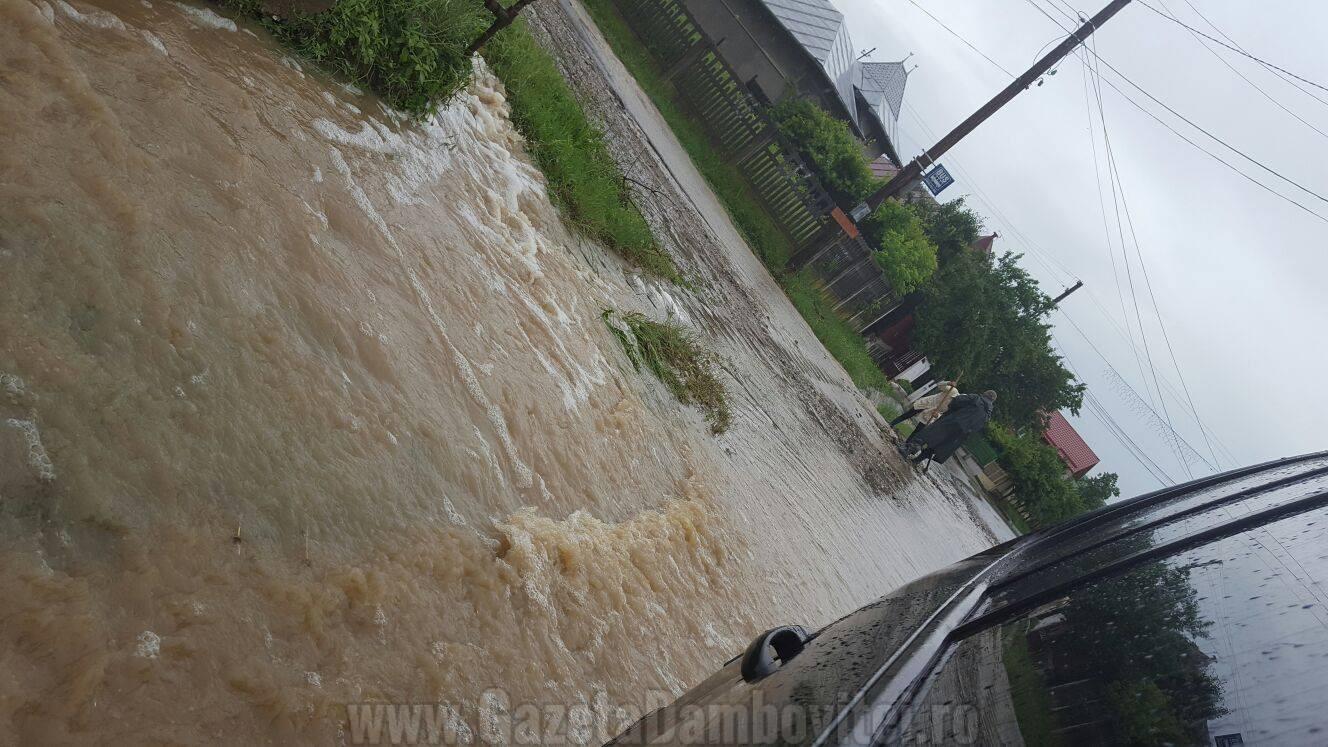 inundatii aninoasa 4
