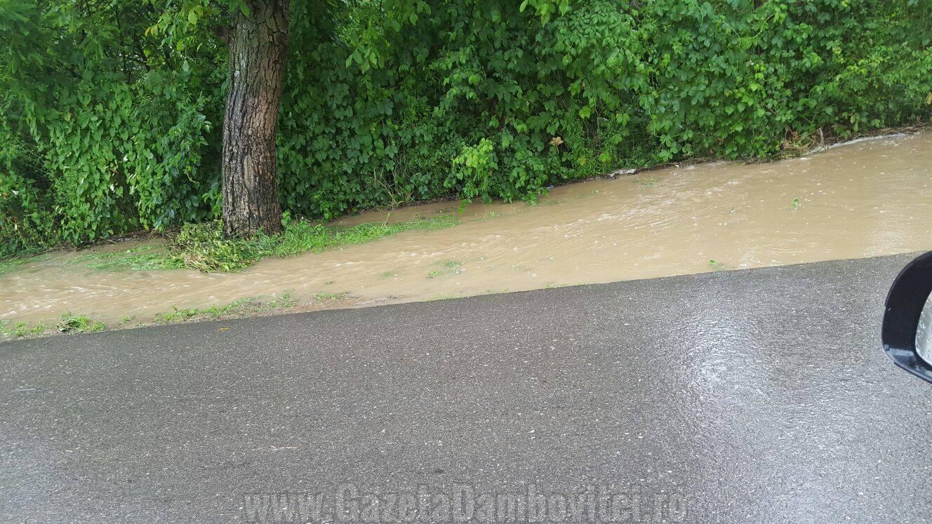 inundatii aninoasa 5