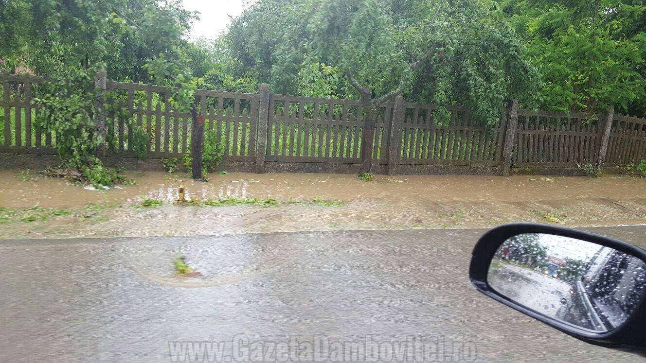 inundatii aninoasa 8
