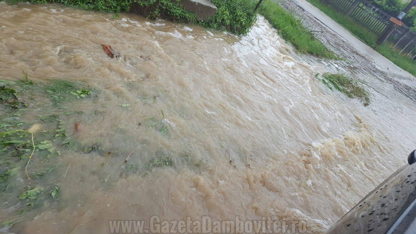 inundatii aninoasa