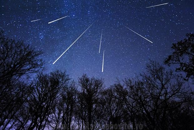 Best images from this year's Perseid meteor shower - ABC News