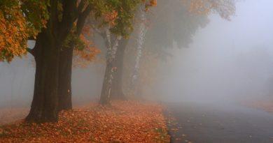 Alertă de vreme severă imediată, și pentru Dâmbovița. Cod Galben de ceață și polei