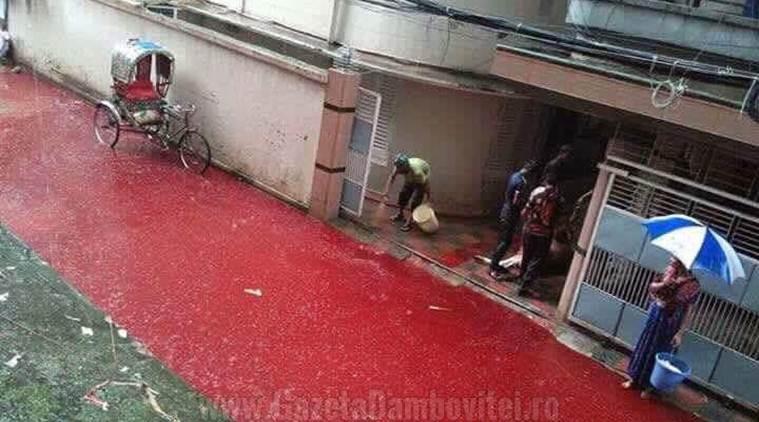 dhaka-blood-roads1-759