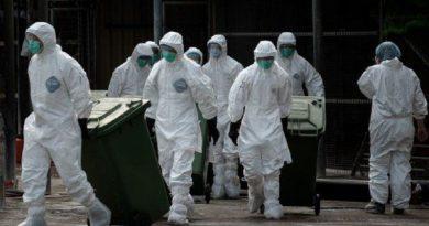DÂMBOVIȚA: Gripa aviară suspendă comerțul ambulant cu păsări vii