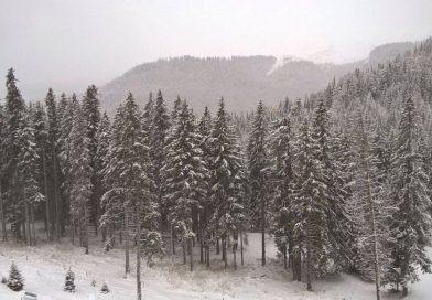 INFORMARE METEO: Ninsori și lapoviță în intervalul 21 – 22 noiembrie