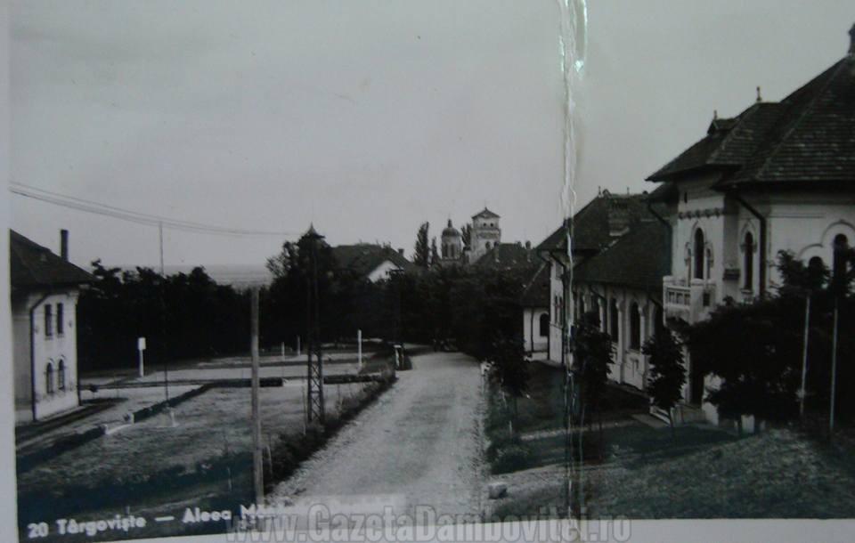 Aleea Mănăstirii Dealu
