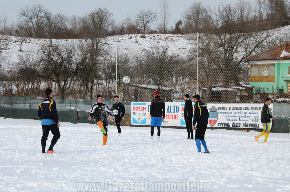 FC Aninoasa (6)