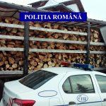 PUCIOASA: Camion ticsit cu lemn fără documente de provenienţă