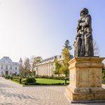Sâmbătă, PSD vrea să mobilizeze 10 000 de susţinători în Centrul Vechi al municipiului Târgovişte