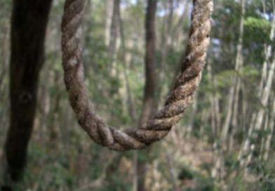 Bărbat spânzurat de un copac, la Odobești