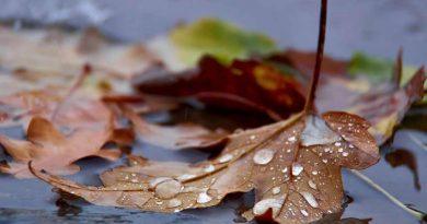 Vremea se va mai răci și există posibilitatea apariției ploilor