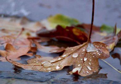METEO: Vești proste de la meteorologi pentru începutul săptămânii