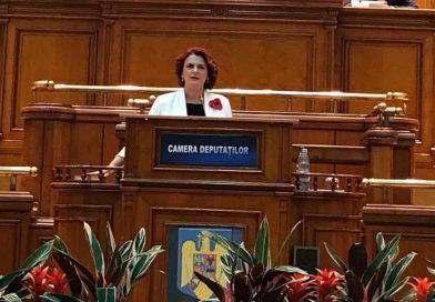 """Agenda parlamentară: Claudia Gilia (PSD) – Violența domestică este """"cancerul"""" societății în care trăim"""