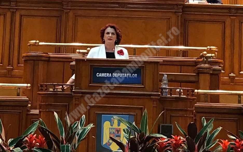 """Agenda parlamentară: Claudia Gilia (PSD) – """"Accesul românilor la actul de cultură, încurajat de primirea tichetelor culturale"""""""