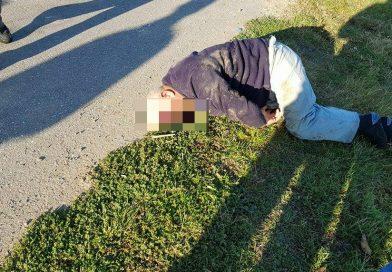 DÂMBOVIȚA: Bătrân, la un pas să fie ucis de doi cai lasați nesupravegheați – VIDEO