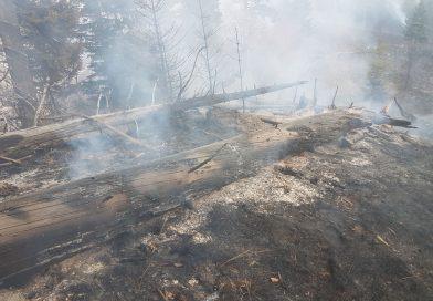 Pompierii urcă din nou în munte! Două focare, încă, ard în zona Valea Rătei – Colţu Pietrei