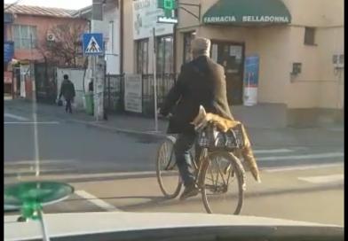 TÂRGOVIȘTE: Dosar penal pentru un bărbat care a omorât o vulpe, după care a plimbat-o prin oraș