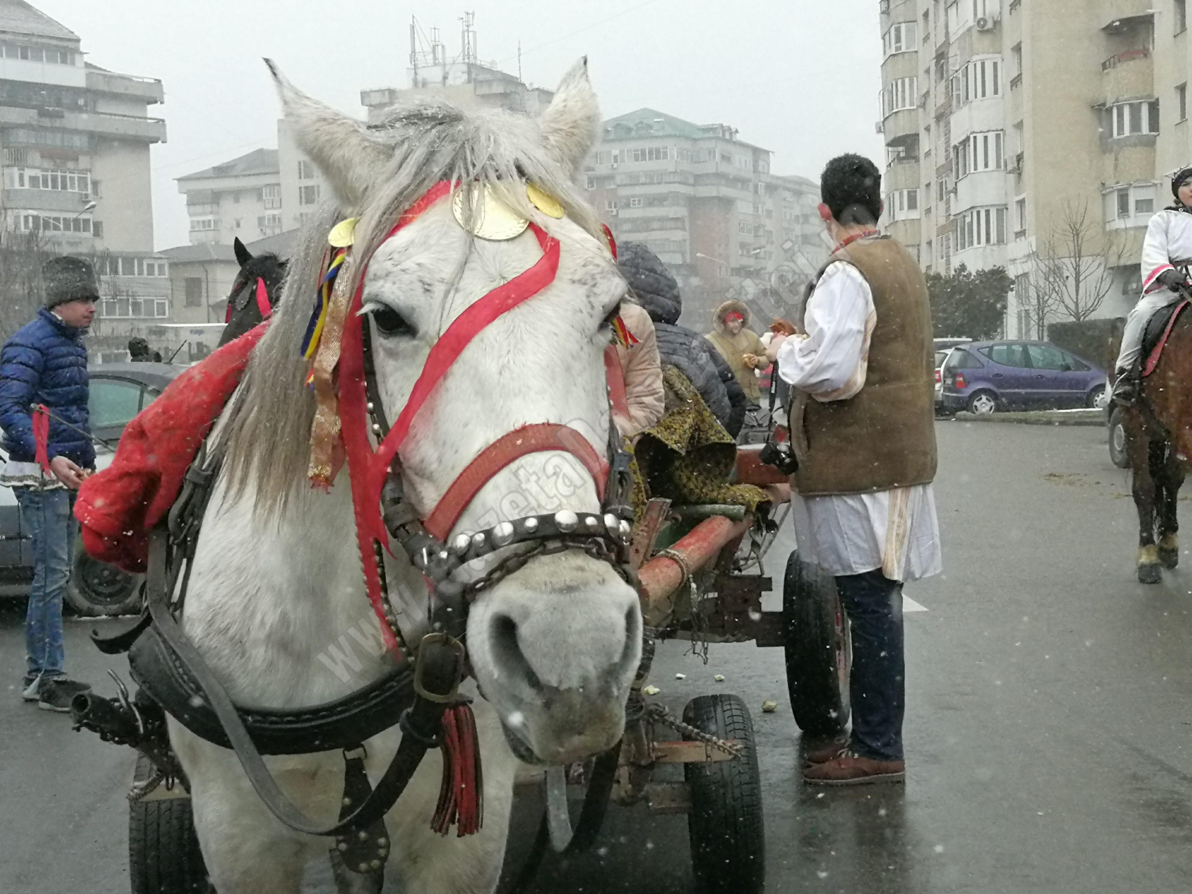 Dâmbovița, un județ rural! Peste 70% din populație locuiește la țară!