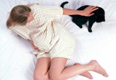 O GRAVIDĂ INFORMATĂ: Ești iubitoare de pisici? Iată la ce riscuri te expui!
