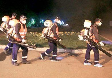 TÂRGOVIȘTE: Atenție, în cursul următoarelor nopți se vor efectua dezinsecții în locuri publice