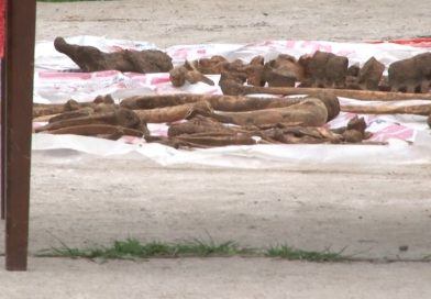 Încă un schelet descoperit la Șotânga. Autoritățile au aflat ce s-a întâmplat