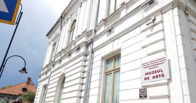 """""""Istorii antisovietice"""" prezentare de carte și dezbatere, astăzi, la Muzeul de Artă"""