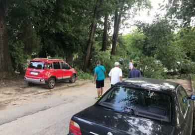 TÂRGOVIȘTE: Arbore prăbușit în zona Parcului Chindia. Persoane blocate în parcarea Brotăcei
