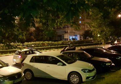 Mai multe mașini avariate pe Calea Domnească, din Târgoviște, de un cal scăpat de sub control