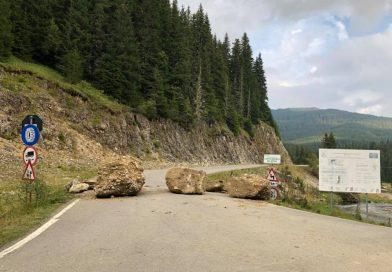BUCEGI: CJD vrea să preia în administrare un drum forestier asfaltat de Romsilva