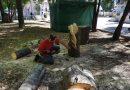 INEDIT: Demonstrații de sculptură cu drujba, la Pucioasa (VIDEO)