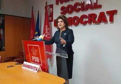 Președintele PSD Dâmbovița,  Rovana Plumb, aleasă vicepreședinte al grupului politic al socialiştilor europeni din PE