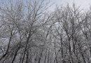 Ce anunță meteorologii pentru luni, 21 ianuarie
