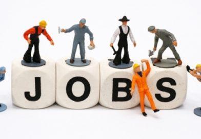 473 locuri de muncă vacante în Spaţiul Economic European. Cum puteți aplica
