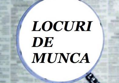 DÂMBOVIȚA: Se organizează concurs pentru 12 posturi în sistemul bugetar