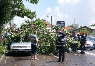 Furtună la Târgoviște: copaci rupți, acoperișuri luate de vânt  – FOTO și VIDEO