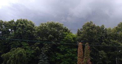 Vremea va fi închisă și temporar va ploua!