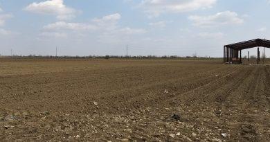 APIA Dâmboviţa consiliază telefonic fermierii. 15 iunie 2020, termenul de depunere a cererilor unice fară penalitatăţi de întârziere