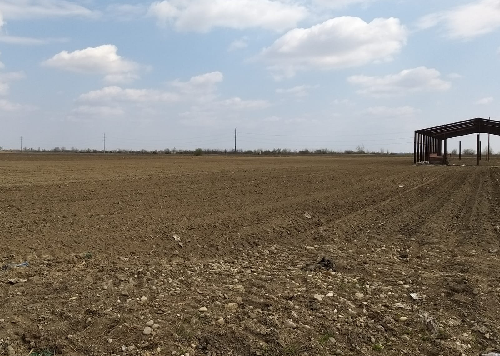APIA Dâmboviţa: Au primit plăţi în avans, până la această dată, 19.549 de fermieri dâmboviţeni
