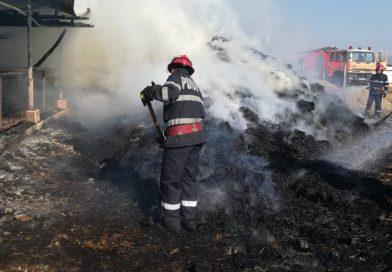 Incendiu puternic la Băleni Sârbi