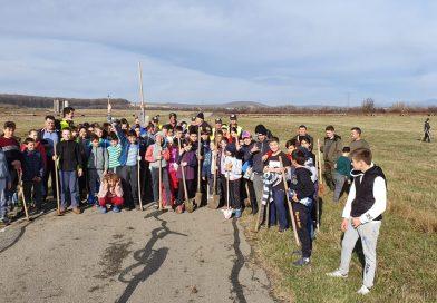 """Prin proiectul """"Rotary plantează """" au fost plantați peste 3000 de puieți în Șotânga"""