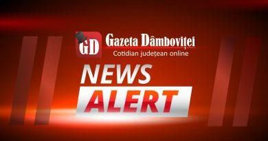 DÂMBOVIȚA: Un bărbat, care a vrut să se sinucidă, a supraviețuit electrocutării și căderii de pe un stâlp