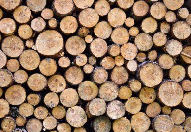 La ce preț a ajuns metrul cub de lemn în județul Dâmbovița?