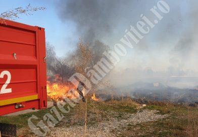 VALEA VOIEVOZILOR: Jandarmii i-au ajutat pe pompieri la o intervenție dificilă! (VIDEO)