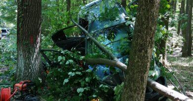 CIOCĂNEȘTI: Trei persoane rănite după ce o mașină s-a izbit de copaci