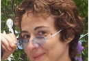 DE DINCOLO  DE  STATUIA LIBERTĂȚII  –  Dana NEACȘU – Campanii prezidențiale