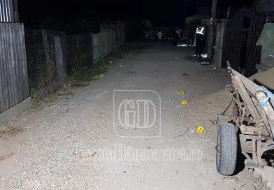 DÂMBOVIȚA: Polițiști tăiați cu coasa de 2 frați. Oamenii legii au tras cu arma