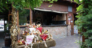 Zilele toamnei la Tower's Pub Chindia! Ce surprize pregătește restaurantul din 25 septembrie