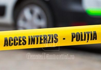DJ 711D: Accident provocat de un minor din Potlogi