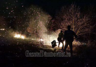 ANINOASA: Incendiu puternic de vegetaţie. Localnicii au dat o mână de ajutor pompierilor (VIDEO)